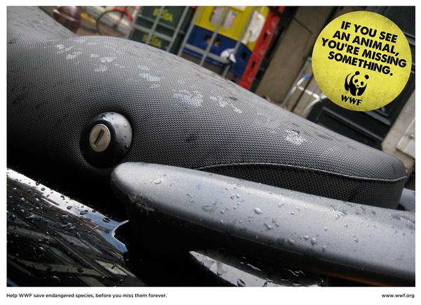 世界自然基金会(WWF)拯救濒危物种公益广告
