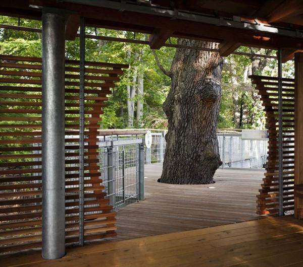 美国宾夕法尼亚州费城莫里斯植物园景观设计 景观设计