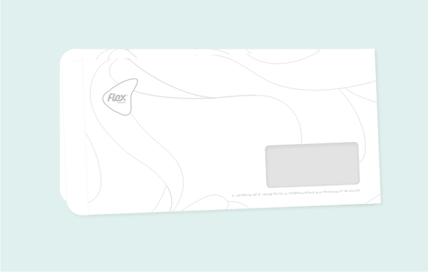FLEX品牌形象设计 VI设计 标志设计 VI设计