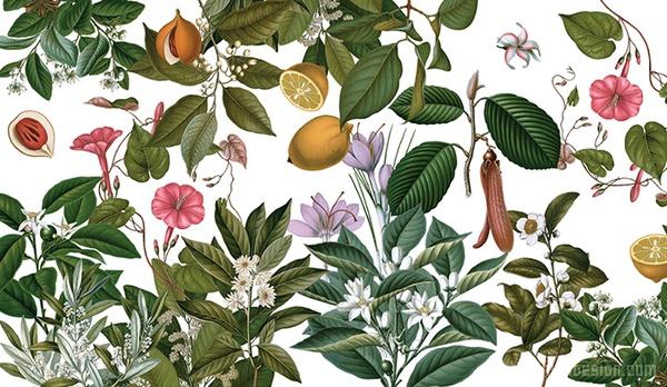 加泰尼亚莱里达 FARMACIA 药店VI设计 画册设计 标志设计 意大利 名片设计 VI设计