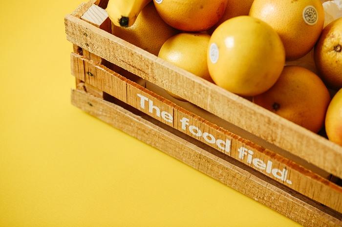墨西哥 The Food Field 食品品牌形象设计 墨西哥 品牌形象设计 包装设计