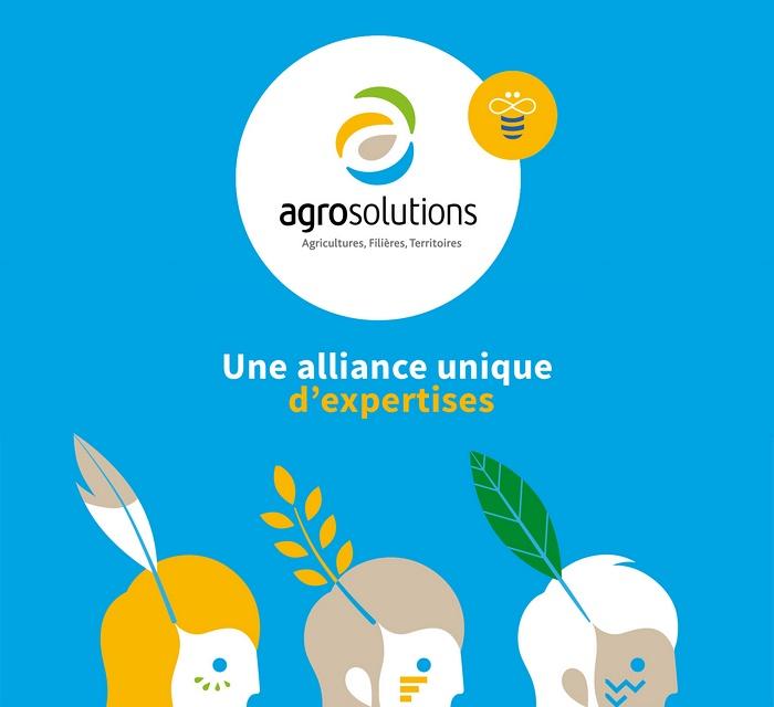 AgroSolutions 农业品牌VI标志设计 网站设计 标识设计 标志设计 名片设计 VI设计
