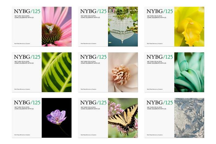 纽约 Botanical Garden 植物园视觉VI设计 美国 品牌形象设计 VI设计